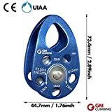 GM CLIMBING UIAA Certified 30kN Swing Cheek Micro