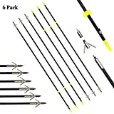 SinoArt Archery Fishing Arrows Bowfishing Arrow Barb Grapple Point Hunting Bow Shoot Fish Arrows Fit for Recurve Bow Compound Bows 6 Pack