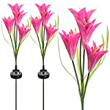Sorbus Solar Light Flower Lily Stakes, Outdoor LED Garden Flowers for Night Lighting, Solar Path Walkway, Lawn, Garden, Pond, Patio, Gravestones, Special Occasions, etc (Pink)