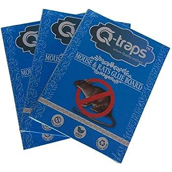 Amazon Com Qtraps Extra Large Mouse Amp Rat Trap Non