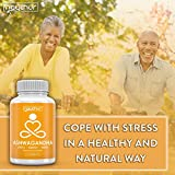 Organic Ashwagandha Root Powder Stress Relief Pills Natural Anti Anxiety Supplements for Adults - Mood Boost Support Cortisol Adrenal Fatigue Energy Supplement - Organic Black Pepper - 120 Tablets
