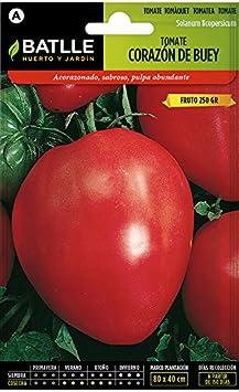 Semillas Hortícolas - Tomate Corazón de Buey - Batlle