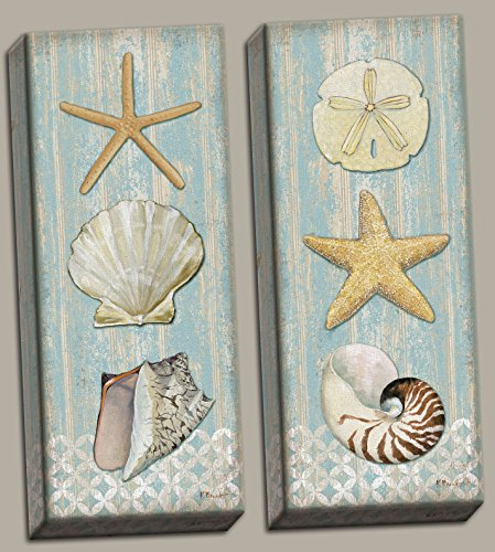 Beautiful-Spa-Shells-Conch-Starfish-Sand-Dollar-Two-8x20in-Hand-Stretched-Canvases