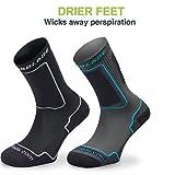 Rollerblade High Performance Women's Socks, Inline
