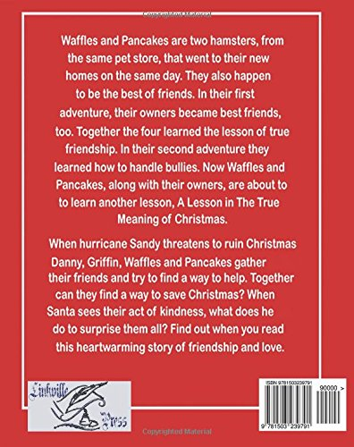 Waffles and Pancakes: A Lesson in the True Meaning of Christmas (Volume 1)