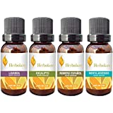 Paquete los 4 básicos Herbolare 5 ml. Lavanda, Eucalipto, Menta Arvensis y Romero 100% puros.