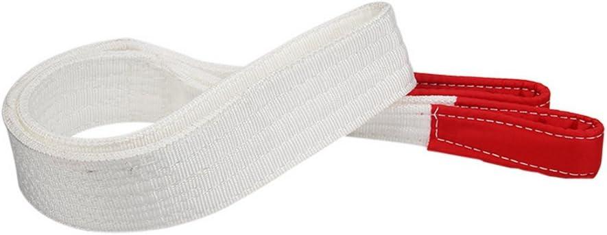 Godagoda Hebeschlinge 3m Flach Nylon 2T 2000KG Hebeband Umzugsgurte Hebegurte 1PC