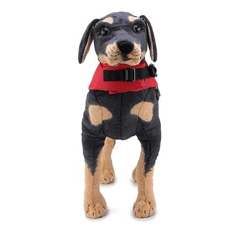 La Vida del Perro del Chaleco De Seguridad Admiten Mascotas Traje De Baño De La Chaqueta