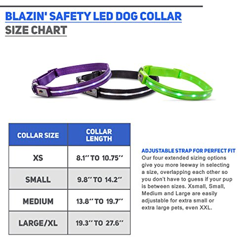 Pictures of Blazin' Safety LED Dog Collar – USB Black XSmall 2