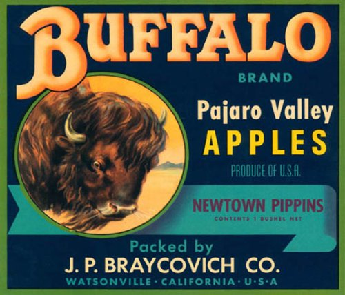 (BUFFALO PAJARO VALLEY APPLES CALIFORNIA USA FRUIT CRATE LABEL PRINT REPRODUCTION)