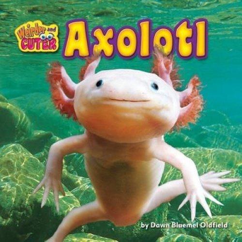 Axolotl (Weirder and Cuter)