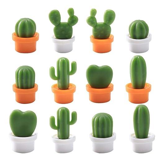 BESTONZON 12 imanes de Nevera con Forma de Cactus, Bonitos imanes ...
