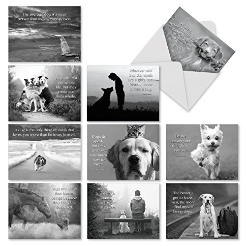 (10 Assorted Canine Comment Thank You Greeting Cards with Envelopes - 'Canine Comments' Thank You Cards with Black and White Animal Image and Inspirational Quote 4 x 5.12 inch M1623TY)