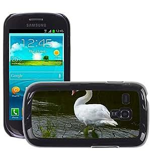 Etui Housse Coque de Protection Cover Rigide pour // M00134160 Pájaro Pájaro acuático Cisne Agua // Samsung Galaxy S3 MINI i8190