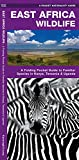 East Africa Wildlife: A Folding Pocket Guide to Familiar Species in Kenya, Tanzania & Uganda (Wildlife and Nature Identification)