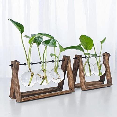 Ivolador Desktop Glass Planter Bulb Vase with Retro Solid Wooden Stand and Metal Swivel Holder for Hydroponics Plants Home Garden Wedding Decor (3 Bulb Vase) 51hVVY4Cr9L