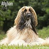 Afghan Calendar 2018 - Dog Breed Calendar - Premium Wall Calendar 2017-2018