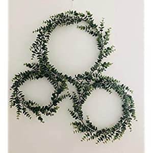 Designs by DH Metal Hoop Full Coverage Wreath Shabby Chic Eucalyptus Succulent Green Simple Wedding Nursery Rustic Farmhouse Scandinavian Home Decor 96