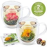 Teabloom Large Insulated Glass Mugs & Blooming Tea Flowers Gift Set (Set of 2 Mugs + 2 Tea Balls) - 18 oz Double Wall Borosilicate Glass Mugs & 2 Gourmet Blooming Green Tea Flowers