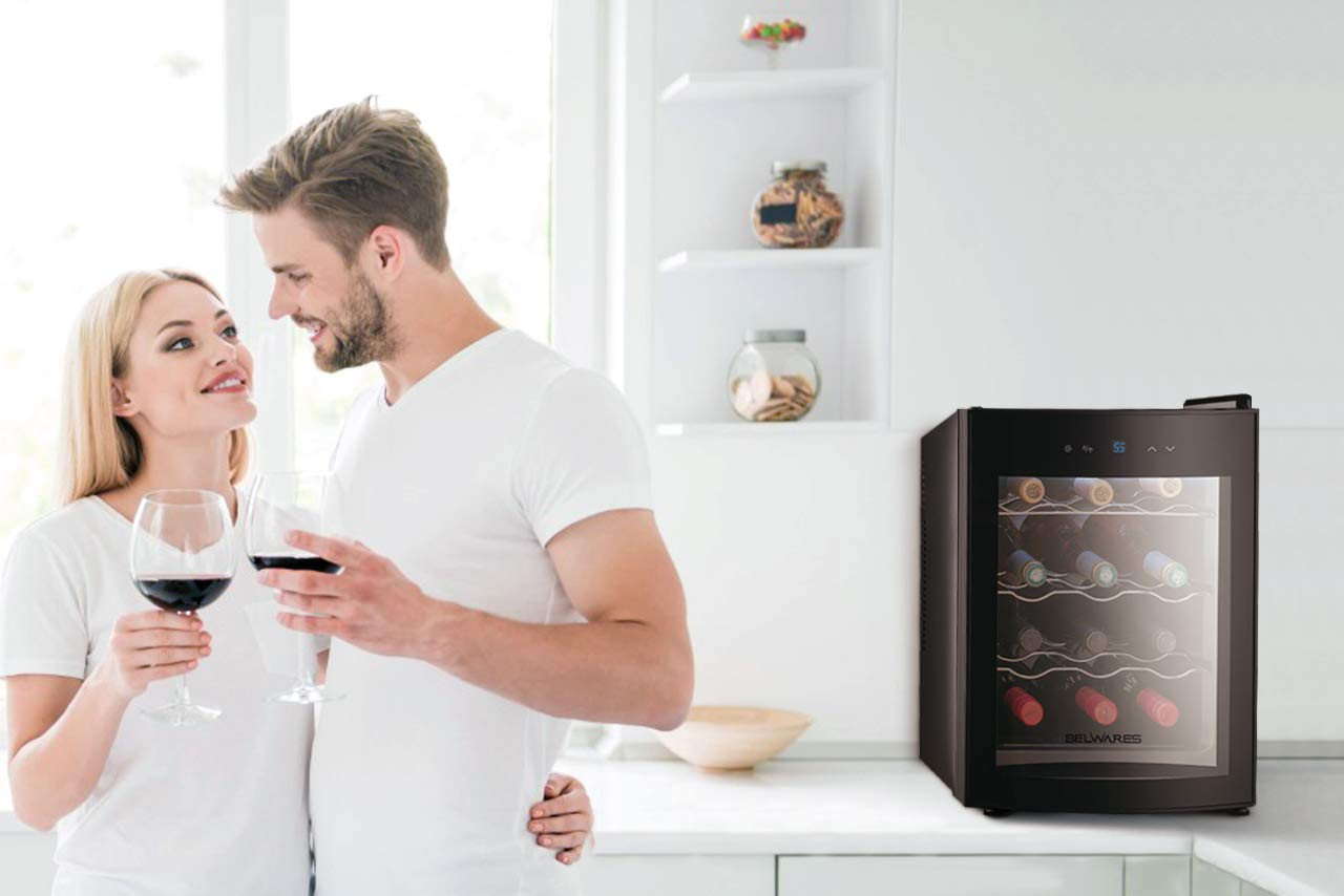 Wine Cooler Refrigerator, 12 Bottle Countertop Wine Chiller Thermoelectric with Digital Temperature Display, Small Wine Cellar Fridge, Freestanding Refrigerator Smoked Glass Door and Quiet Operation