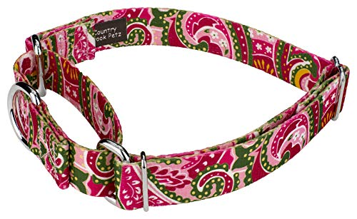 Image of Country Brook Petz | Martingale Dog Collar - Five Paisley Collection (Pink Paisley, 1 Inch, Extra Large)