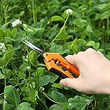vivosun gardening shears