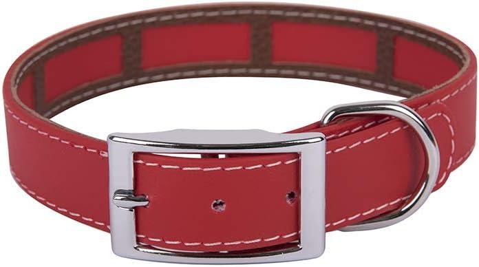 Francisco Romero - Collar con Funda Antiparasitaria Biothane Beta, 2.5 x 50 cm, Rojo