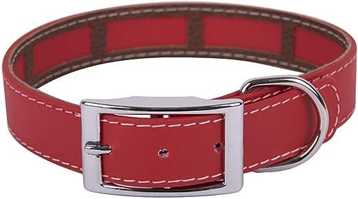 Francisco Romero - Collar con Funda Antiparasitaria Biothane Beta, 2.5 x 45 cm, Rojo: Amazon.es: Productos para mascotas