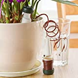 LiPing Automatic Watering Device Houseplant Indoor Plants Automatic Drip Irrigation Watering System Flower Pot Waterer Tool, Self Plant Watering Devices for. (A)