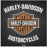 Harley Davidson Leather Poster 15.75x15.75