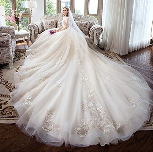 NUO-Z Cap Straps Sleeveless Tulle Ball-Gown Empire V Neck Watteau Train Embroidery Wedding Dress Sheath Column Bridal Gown Garden Beach XXXL