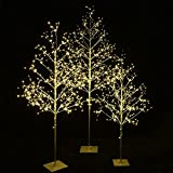 Starlit Tree Collection Cambo, Pack of 3, 4 Feet, 5 Feet, and 6 Feet, Champagne Gold Finish, Warm White Lights, Perfect For Home Decor, Holiday, Party, Wedding