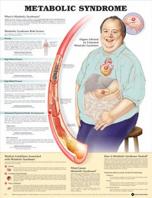 Metabolic Syndrome Anatomical Chart - Anatomical Chart Metabolic Syndrome Anatomical Chart - Paper