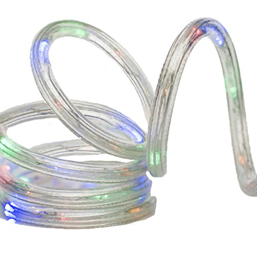 Led Multi Color Flat Rope Light in Florida - 5