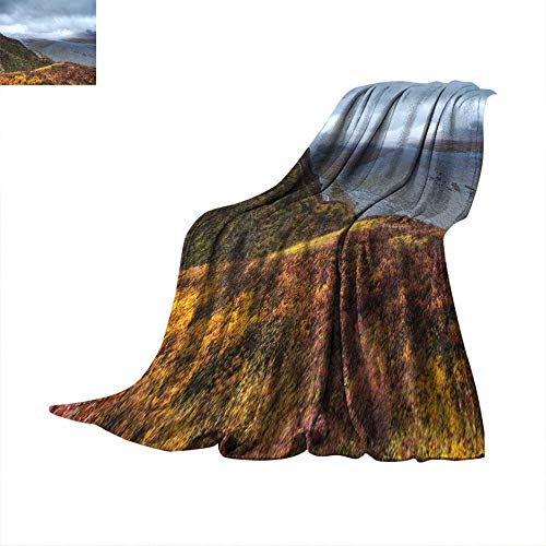 WinfreyDecor Warm Blanket A Braided River and ripe Blueberry Bushes Under Stormy Skies in Denali National Park Throw Blanket 60
