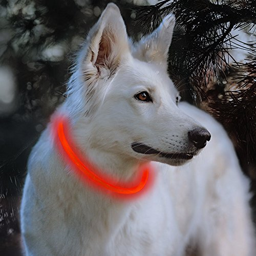 Bseen LED Dog Collar - Cuttable Water Resistant Glowing Dog Collar Light Up, Battery Powered Pet Necklace Loop for Small, Medium, Large Dogs (Ruby Red)
