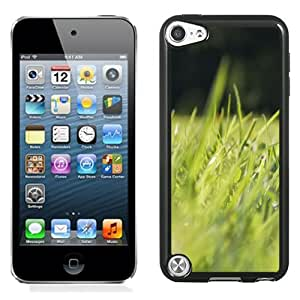 New Fashionable Designed For iPod Touch 5th Phone Case With Grass Spring Morning 640x1136 Phone Case Cover