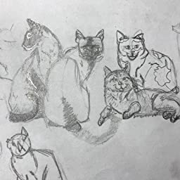 Draw 50 Cats The Step By Step Way To Draw Domestic Breeds Wild Cats Cuddly Kittens And Famous Felines Ames Lee J Amazon Com Books