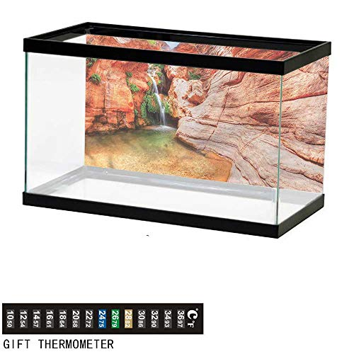 (bybyhome Fish Tank Backdrop Americana,Colorado River Plateau,Aquarium Background,36