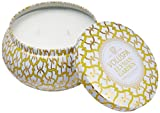 Voluspa Elysian Garden 2 Wick Decorative Metallo Candle in Printed Tin