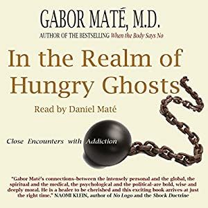 In the Realm of Hungry Ghosts Audiobook