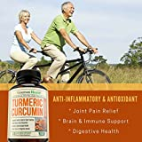 Turmeric-Curcumin-with-Bioperine-Anti-Inflammatory-Antioxidant-Anti-Aging-Supplement-with-10mg-of-Black-Pepper-for-Better-Absorption-100-All-Natural-Non-Gmo-Joint-Pain-Relief