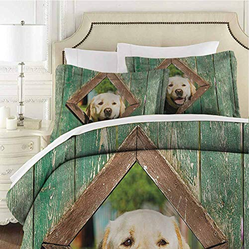 Funny Bedding Set Full Curious Dog Looks from Window Cal King (104x98 inches) - 3 Pieces (1 Duvet Cover + 2 Pillow Shams) - with Zipper Closure Ultra