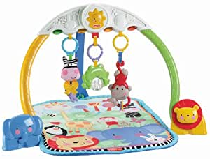 Fisher-Price Discover 'n Grow Tracking Lights Musical Gym (Discontinued by Manufacturer)
