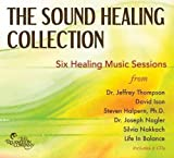 img - for The Sound Healing Collection: Sessions from Six Sound Healing Pioneers book / textbook / text book