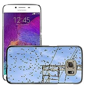 Super Stella Slim PC Hard Case Cover Skin Armor Shell Protection // M00104549 Star Stare Star Flight Flock Of Birds // Samsung Galaxy S6 (Not Fits S6 EDGE)