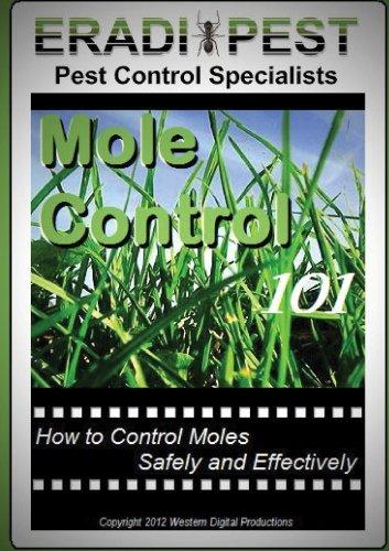 Mole Pest Control 101 (Lawn Care Moles)