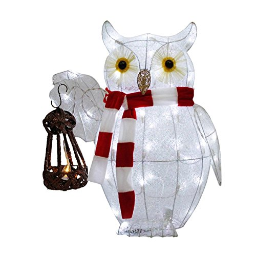 Outdoor Lighted Owl - 1