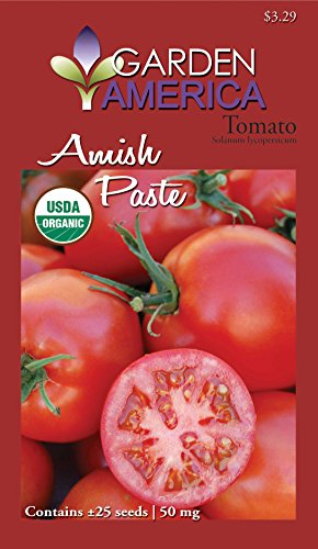 amish paste tomato - 6