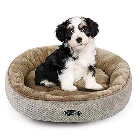 Pecute Cama para Mascotas Colchoneta Basic para Perros y Gatos (mediana: 55cm de diámetro